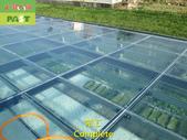 1204 溫室-屋頂-強化玻璃採光罩-清除水垢工程 - 相片:1204 溫室-屋頂-強化玻璃採光罩-清除水垢工程 (29).JPG