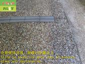 1665 社區-車道-抿石-石英磚地面止滑防滑施工工程 - 相片:1665 社區-車道-抿石-石英磚地面止滑防滑施工工程 - 相片 (15).JPG