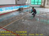 1643 School-Auditorium-Terrazzo Floor Anti-Slip Co:1643 School-Auditorium-Terrazzo Floor Anti-Slip Construction-Photo (12).JPG