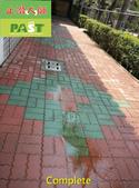 1120 Home - Brick Moss & Dirt Clean Treatment - ph:1120 Home - Brick Moss & Dirt Clean Treatment (8).jpg