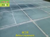 1204 溫室-屋頂-強化玻璃採光罩-清除水垢工程 - 相片:1204 溫室-屋頂-強化玻璃採光罩-清除水垢工程 (9).JPG