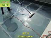1204 溫室-屋頂-強化玻璃採光罩-清除水垢工程 - 相片:1204 溫室-屋頂-強化玻璃採光罩-清除水垢工程 (10).JPG