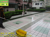 1800 Community-Walkway-Elevator Exit-Whole Body Br:1800 Community-Walkway-Elevator Exit-Whole Body Brick Anti-slip and Anti-slip Construction Project - Photo (21).JPG