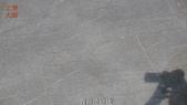 哈魚碼頭噴水池磁磚地面殘膠清除止滑施工-魚池青苔清除-木板走道污垢清除-魚市拍賣區地面污垢清除:13青苔清除-止滑大師-止滑劑防滑劑止滑防滑施工