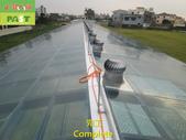 1204 溫室-屋頂-強化玻璃採光罩-清除水垢工程 - 相片:1204 溫室-屋頂-強化玻璃採光罩-清除水垢工程 (38).JPG