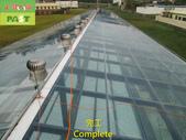 1204 溫室-屋頂-強化玻璃採光罩-清除水垢工程 - 相片:1204 溫室-屋頂-強化玻璃採光罩-清除水垢工程 (37).JPG