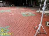 1503 Home Garden-Red Brick Floor Moss Cleaning Pro:1503 Home Garden-Red Brick Floor Moss Cleaning Project - Photo (31).jpg