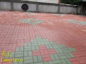 1503 Home Garden-Red Brick Floor Moss Cleaning Pro:1503 Home Garden-Red Brick Floor Moss Cleaning Project - Photo (34).jpg
