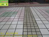 1800 社區-走道-電梯出口-通體磚止滑防滑施工工程 - 相片:1800 社區-走道-電梯出口-通體磚止滑防滑施工工程 - 相片 (49).JPG