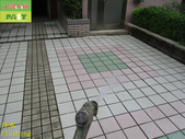 1800 Community-Walkway-Elevator Exit-Whole Body Br:1800 Community-Walkway-Elevator Exit-Whole Body Brick Anti-slip and Anti-slip Construction Project - Photo (42).JPG