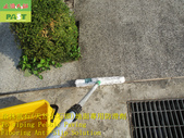 1789 住家-戶外-小斜坡-抿石地面止滑防滑施工工程 - 相片:1789 住家-戶外-小斜坡-抿石地面止滑防滑施工工程 - 相片 (5).JPG
