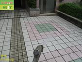 1800 社區-走道-電梯出口-通體磚止滑防滑施工工程 - 相片:1800 社區-走道-電梯出口-通體磚止滑防滑施工工程 - 相片 (42).JPG