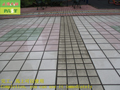 1800 Community-Walkway-Elevator Exit-Whole Body Br:1800 Community-Walkway-Elevator Exit-Whole Body Brick Anti-slip and Anti-slip Construction Project - Photo (49).JPG