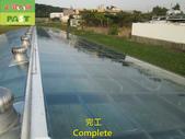 1204 溫室-屋頂-強化玻璃採光罩-清除水垢工程 - 相片:1204 溫室-屋頂-強化玻璃採光罩-清除水垢工程 (33).JPG