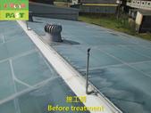1204 溫室-屋頂-強化玻璃採光罩-清除水垢工程 - 相片:1204 溫室-屋頂-強化玻璃採光罩-清除水垢工程 (2).JPG