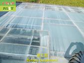 1204 溫室-屋頂-強化玻璃採光罩-清除水垢工程 - 相片:1204 溫室-屋頂-強化玻璃採光罩-清除水垢工程 (7).JPG