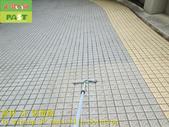 1819 工廠-地下室-車道-立體止滑磚止滑防滑施工工程 - 相片:1819 工廠-地下室-車道-立體止滑磚止滑防滑施工工程 - 相片 (10).JPG