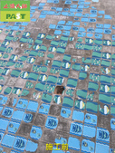 1123 游泳池陳年水垢清除工程 - 相片:1123 游泳池陳年水垢清除工程 (5).jpg