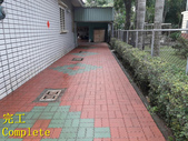 1503 Home Garden-Red Brick Floor Moss Cleaning Pro:1503 Home Garden-Red Brick Floor Moss Cleaning Project - Photo (28).jpg