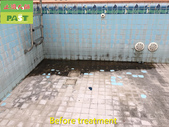 1123 Swimming Pool Aged Scale Remove Treatment - p:1123 Swimming Pool Aged Scale Remove Treatment (2).jpg