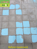 1123 Swimming Pool Aged Scale Remove Treatment - p:1123 Swimming Pool Aged Scale Remove Treatment (4).jpg