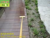 1788 Park-Outdoor Trail-Wooden Plank Road Anti-sli:1788 Park-Outdoor Trail-Wooden Plank Road Anti-slip and Anti-slip Construction Project - Photo (15).JPG