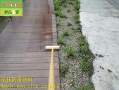 1788 Park-Outdoor Trail-Wooden Plank Road Anti-sli:1788 Park-Outdoor Trail-Wooden Plank Road Anti-slip and Anti-slip Construction Project - Photo (16).JPG