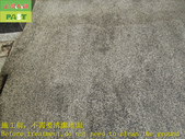 1789 Home-Outdoor-Small Slope-Slip-proof and Anti-:1789 Home-Outdoor-Small Slope-Slip-proof and Anti-slip Construction Works on Squid Stone Floor - Photo (1).JPG