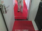 51-廁所防滑止滑-福建省平潭市海峽號碼頭廁所:5洗手間舖滿塑膠墊 (1).jpg