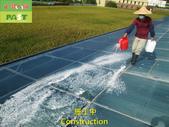1204 溫室-屋頂-強化玻璃採光罩-清除水垢工程 - 相片:1204 溫室-屋頂-強化玻璃採光罩-清除水垢工程 (19).JPG