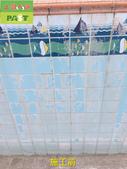 1123 游泳池陳年水垢清除工程 - 相片:1123 游泳池陳年水垢清除工程 (3).jpg