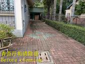 1503 住家庭院-連鎖磚地面青苔清洗工程-照片:1503 住家庭院-連鎖磚地面青苔清洗工程-照片 (4).jpg