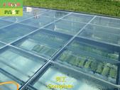 1204 溫室-屋頂-強化玻璃採光罩-清除水垢工程 - 相片:1204 溫室-屋頂-強化玻璃採光罩-清除水垢工程 (28).JPG
