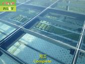 1204 溫室-屋頂-強化玻璃採光罩-清除水垢工程 - 相片:1204 溫室-屋頂-強化玻璃採光罩-清除水垢工程 (27).JPG