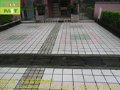 1800 Community-Walkway-Elevator Exit-Whole Body Br:1800 Community-Walkway-Elevator Exit-Whole Body Brick Anti-slip and Anti-slip Construction Project - Photo (1).JPG