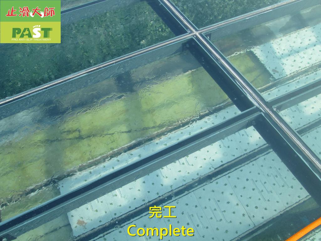 1204 溫室-屋頂-強化玻璃採光罩-清除水垢工程 - 相片:1204 溫室-屋頂-強化玻璃採光罩-清除水垢工程 (32).JPG