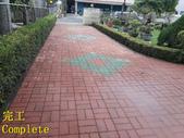 1503 Home Garden-Red Brick Floor Moss Cleaning Pro:1503 Home Garden-Red Brick Floor Moss Cleaning Project - Photo (36).jpg