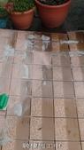 家庭浴室及各場所-地面止滑防滑去污施工:施工中1-止滑大師Anti- slit Pro創業加盟連鎖止滑液防滑劑止滑防滑專業施工地坪瓷磚浴室防滑止滑