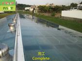1204 溫室-屋頂-強化玻璃採光罩-清除水垢工程 - 相片:1204 溫室-屋頂-強化玻璃採光罩-清除水垢工程 (35).JPG