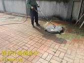 1503 Home Garden-Red Brick Floor Moss Cleaning Pro:1503 Home Garden-Red Brick Floor Moss Cleaning Project - Photo (22).jpg