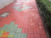 1503 Home Garden-Red Brick Floor Moss Cleaning Pro:1503 Home Garden-Red Brick Floor Moss Cleaning Project - Photo (30).jpg
