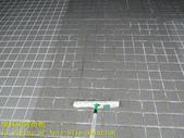 1519 社區-車道-高硬度磁磚-抿石地面止滑防滑施工工程-照片:1519 社區-車道-高硬度磁磚-抿石地面止滑防滑施工工程-照片 (14).JPG