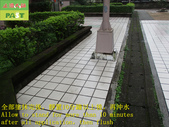 1800 Community-Walkway-Elevator Exit-Whole Body Br:1800 Community-Walkway-Elevator Exit-Whole Body Brick Anti-slip and Anti-slip Construction Project - Photo (31).JPG