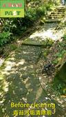 1149  登山步道-石磚青苔汙垢清洗施工工程 - 相片:1149  登山步道-石磚青苔汙垢清洗施工工程 (3).jpg