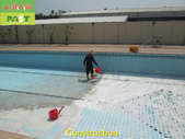 1123 Swimming Pool Aged Scale Remove Treatment - p:1123 Swimming Pool Aged Scale Remove Treatment (8).JPG