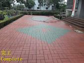 1503 Home Garden-Red Brick Floor Moss Cleaning Pro:1503 Home Garden-Red Brick Floor Moss Cleaning Project - Photo (25).jpg