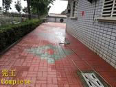 1503 Home Garden-Red Brick Floor Moss Cleaning Pro:1503 Home Garden-Red Brick Floor Moss Cleaning Project - Photo (33).jpg