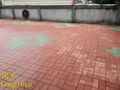 1503 Home Garden-Red Brick Floor Moss Cleaning Pro:1503 Home Garden-Red Brick Floor Moss Cleaning Project - Photo (35).jpg