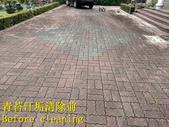1503 住家庭院-連鎖磚地面青苔清洗工程-照片:1503 住家庭院-連鎖磚地面青苔清洗工程-照片 (7).jpg