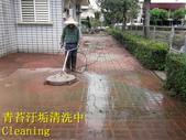 1503 Home Garden-Red Brick Floor Moss Cleaning Pro:1503 Home Garden-Red Brick Floor Moss Cleaning Project - Photo (24).jpg